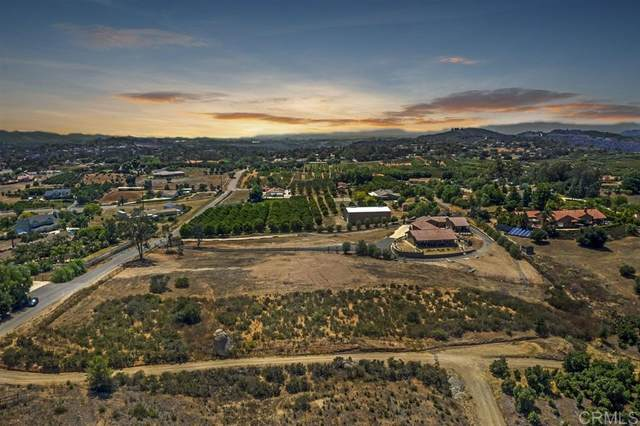 30564 Tyler Heights #1, Valley Center, CA 92082 (#200037030) :: Whissel Realty