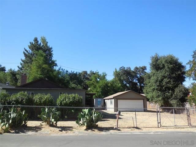 29441 Lilac Drive, Campo, CA 91906 (#200037064) :: Neuman & Neuman Real Estate Inc.