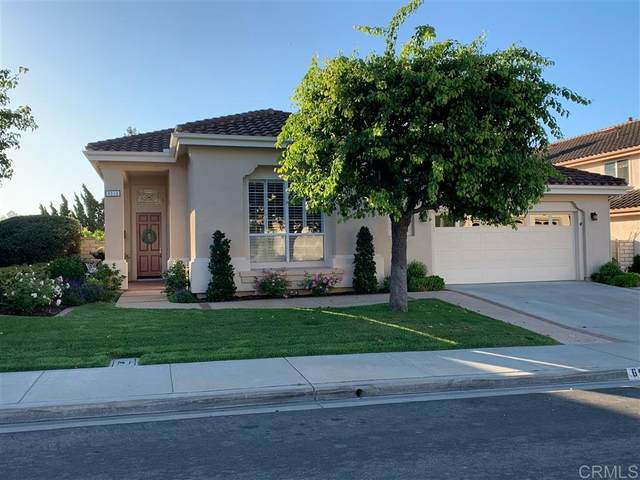 6919 Wildrose Terrace, Carlsbad, CA 92011 (#200037068) :: The Stein Group