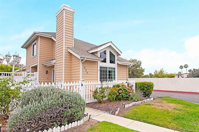 803 Spindrift Ln, Carlsbad, CA 92011 (#200037083) :: The Stein Group
