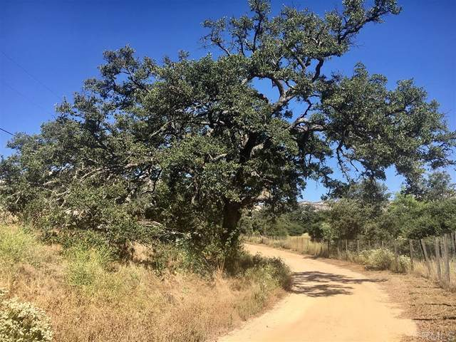 48 Acres Mother Grundy Truck Trail #00, Jamul, CA 91935 (#200037280) :: Neuman & Neuman Real Estate Inc.