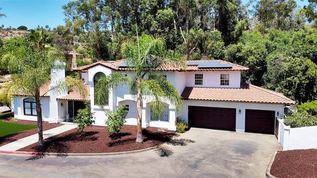 9742 Raspberry Ice Lane, La Mesa, CA 91941 (#200038138) :: Neuman & Neuman Real Estate Inc.