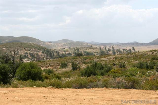 Winn Ranch Rd - Parcel 2 #0, Julian, CA 92036 (#200039679) :: Cay, Carly & Patrick | Keller Williams