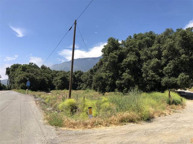 0 Highway 76 #140, Pauma Valley, CA 92061 (#200042154) :: Neuman & Neuman Real Estate Inc.