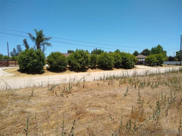 No Address Available #0, Ramona, CA 92065 (#200043873) :: Neuman & Neuman Real Estate Inc.