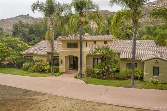 29547 Cedar Trails Rd, Valley Center, CA 92082 (#200044399) :: Neuman & Neuman Real Estate Inc.
