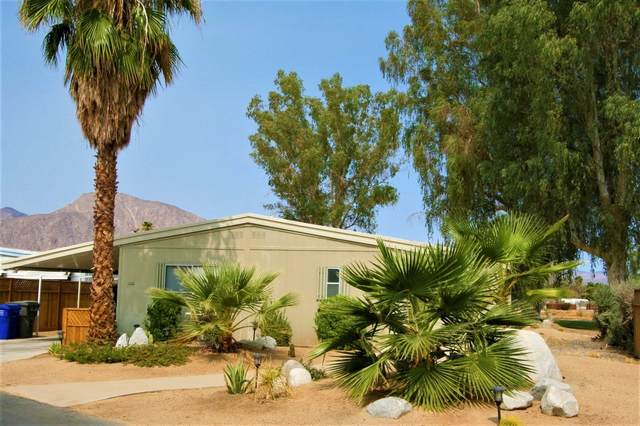 1010 Palm Canyon Dr #228, Borrego Springs, CA 92004 (#200046369) :: Cay, Carly & Patrick | Keller Williams