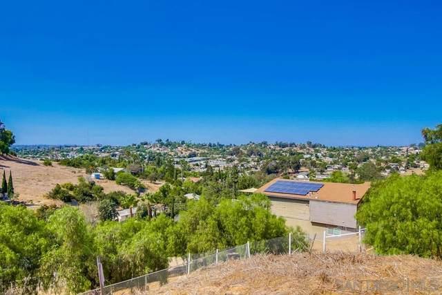 333 Woodman St, San Diego, CA 92114 (#200046528) :: SunLux Real Estate
