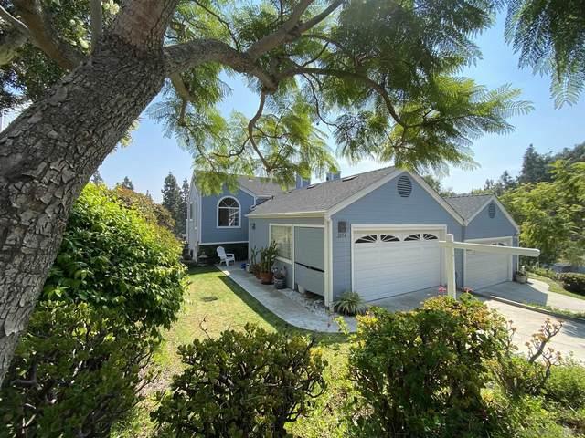 2054 Mountain Vista Way, Oceanside, CA 92054 (#200047626) :: Cay, Carly & Patrick | Keller Williams