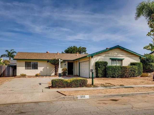 250 Dorothy Ct, Escondido, CA 92027 (#200049772) :: Neuman & Neuman Real Estate Inc.