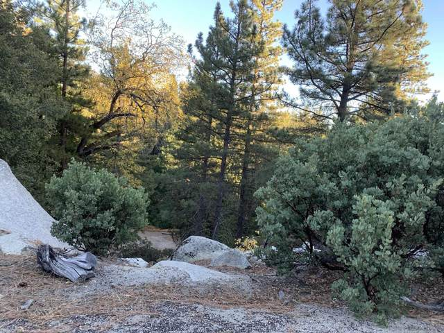 0 000 #0, Idyllwild, CA 92549 (#200050667) :: Team Forss Realty Group