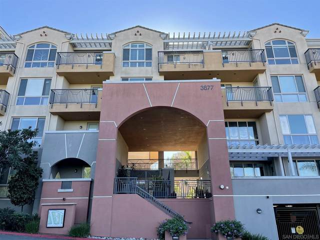 3877 Pell Pl #401, San Diego, CA 92130 (#200052729) :: The Stein Group