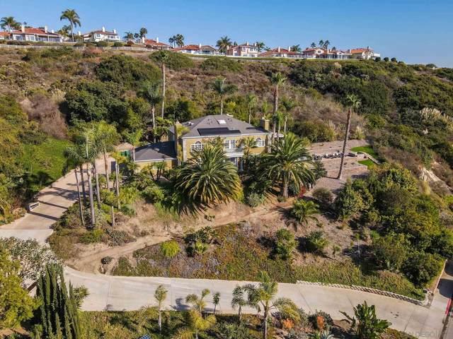 4650 Park Drive, Carlsbad, CA 92008 (#200052764) :: Neuman & Neuman Real Estate Inc.