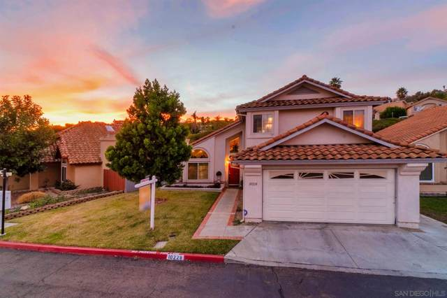 10228 Stone Point Ln, Spring Valley, CA 91977 (#210000061) :: PURE Real Estate Group