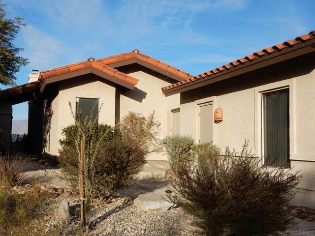 3013 Roadrunner Dr S, Borrego Springs, CA 92004 (#210000140) :: Neuman & Neuman Real Estate Inc.