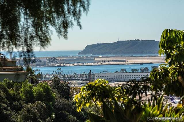 3966 Pringle St, San Diego, CA 92103 (#210000181) :: Tony J. Molina Real Estate