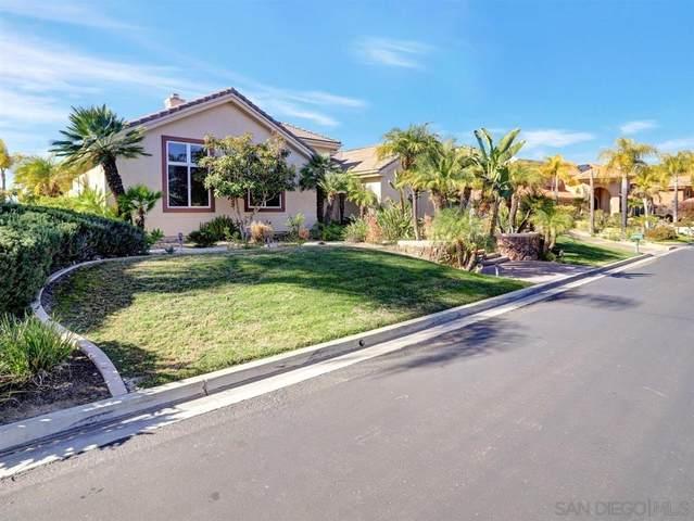 3334 Wentworth Way, Jamul, CA 91935 (#210001105) :: Tony J. Molina Real Estate