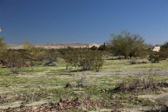 343 Verbena Dr #198, Borrego Springs, CA 92004 (#210002036) :: Tony J. Molina Real Estate
