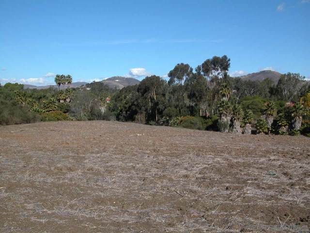 014 Paseo Delicias #14, Rancho Santa Fe, CA 92067 (#210002690) :: Neuman & Neuman Real Estate Inc.