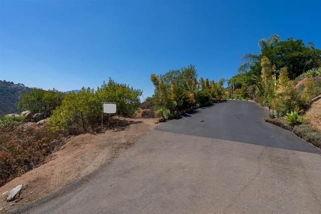 5 Acr Alta Loma Lane #04, Jamul, CA 91935 (#210003724) :: San Diego Area Homes for Sale