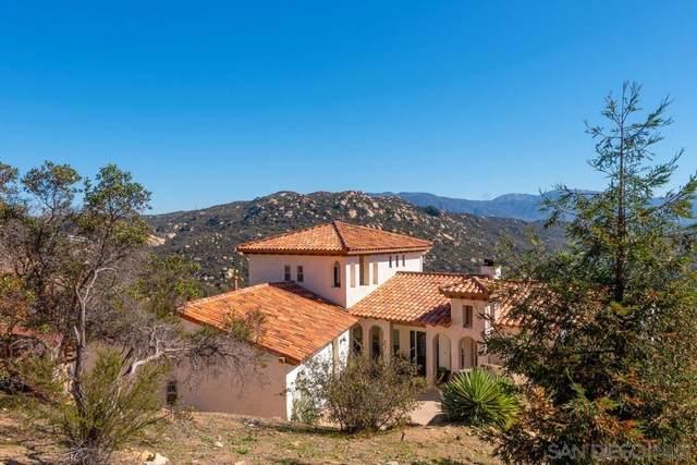 6941 Rainbow Heights Rd, Fallbrook, CA 92028 (#210003743) :: Neuman & Neuman Real Estate Inc.