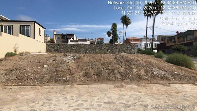 11696 Rest. Ballena Lot 168, Tijuana, CA 99999 (#210003943) :: Neuman & Neuman Real Estate Inc.