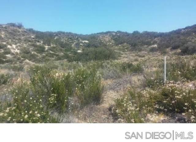 0 Lee Trail #14, Aguanga, CA 92536 (#210003946) :: Neuman & Neuman Real Estate Inc.