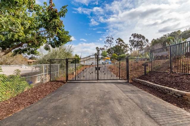 1248 Grace Way, Escondido, CA 92026 (#210004018) :: Neuman & Neuman Real Estate Inc.