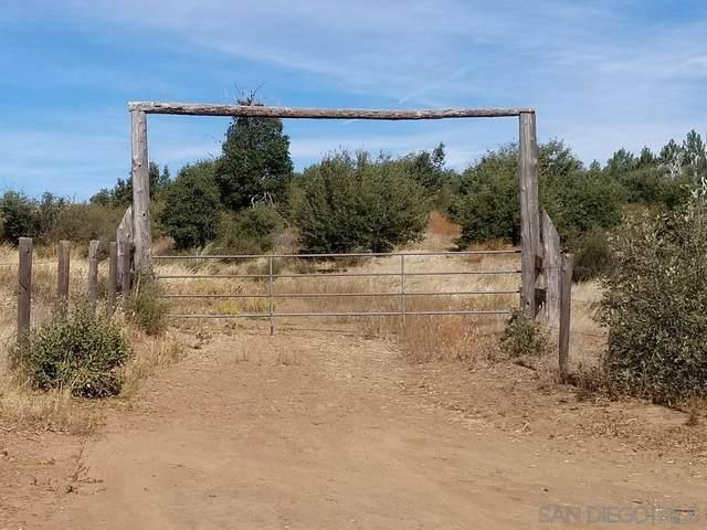 Harrison Park Rd #0, Julian, CA 92036 (#210004644) :: Neuman & Neuman Real Estate Inc.