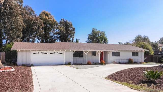 3733 Andreen Ln, Spring Valley, CA 91977 (#210005018) :: SD Luxe Group