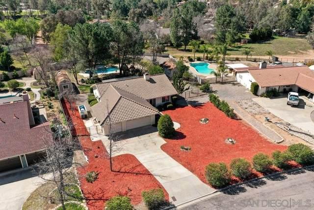 24931 Via Lopez Court, Ramona, CA 92065 (#210005095) :: Neuman & Neuman Real Estate Inc.