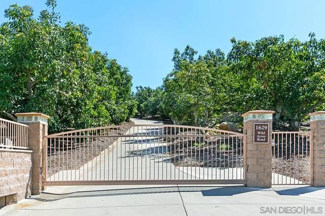 1629 Wild Acres Rd, Vista, CA 92084 (#210005150) :: Keller Williams - Triolo Realty Group