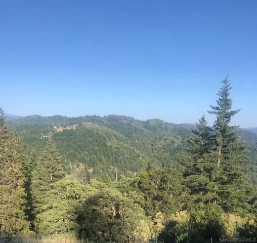 18040 Tomki #12, Redwood Valley, CA 95470 (#210005474) :: Neuman & Neuman Real Estate Inc.