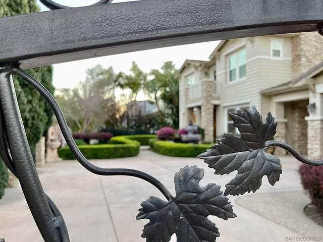 694 Cypress Hills Dr, Encinitas, CA 92024 (#210005481) :: Neuman & Neuman Real Estate Inc.