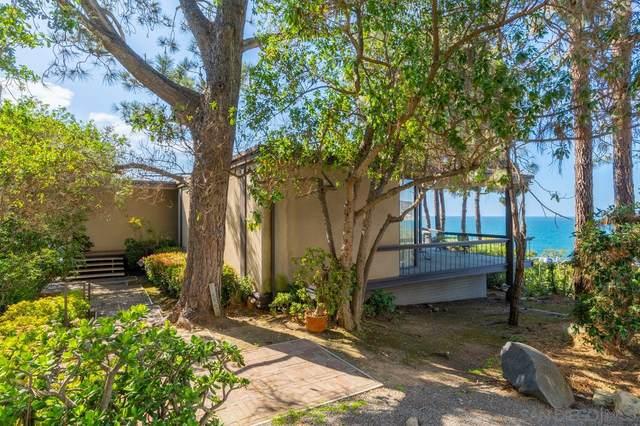 1595 Coast Walk, La Jolla, CA 92037 (#210007861) :: SD Luxe Group