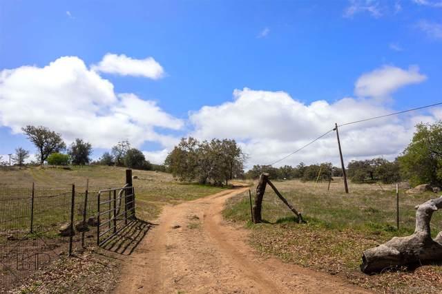 25240 Black Canyon Rd 45, 22, 49, Santa Ysabel, CA 92070 (#210008100) :: Keller Williams - Triolo Realty Group