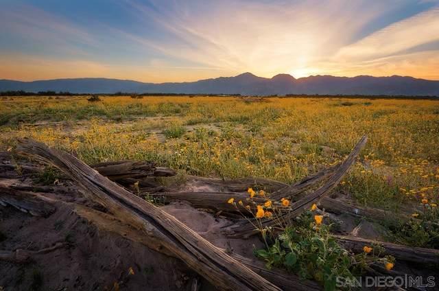 0 Borrego Valley Rd #0, Borrego Springs, CA 92004 (#210009619) :: Zember Realty Group
