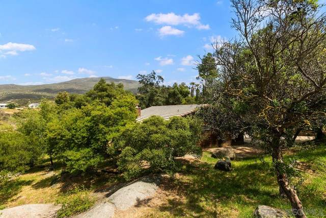 537 Victoria Knolls Dr, Alpine, CA 91901 (#210009829) :: Wannebo Real Estate Group