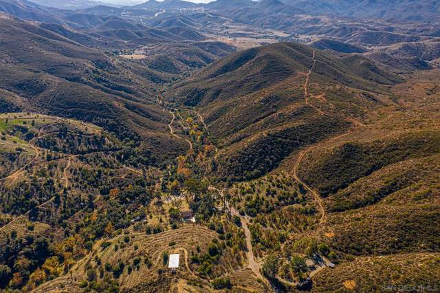 2009 Honey Springs Rd, Jamul, CA 91935 (#210010796) :: The Legacy Real Estate Team