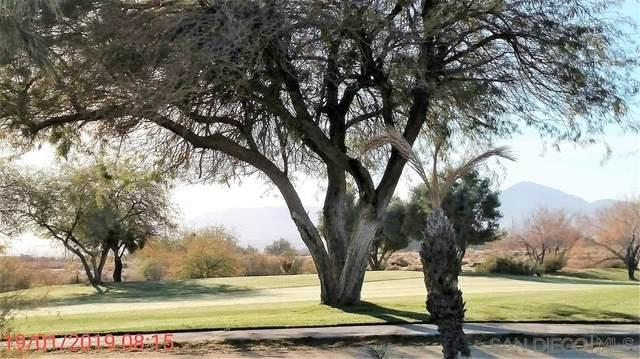 Foursome Dr #84, Borrego Springs, CA 92004 (#210011100) :: Neuman & Neuman Real Estate Inc.