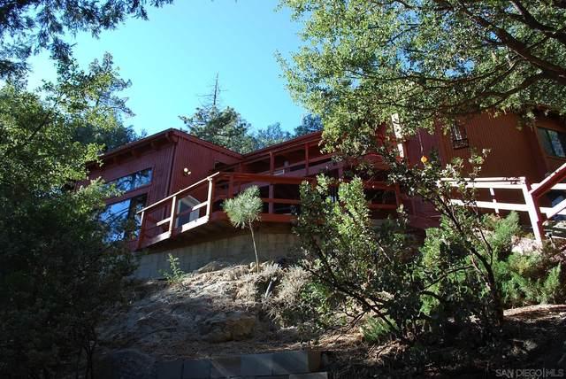 53580 Jeffrey Pine Rd, Idyllwild, CA 92549 (#210011582) :: Neuman & Neuman Real Estate Inc.