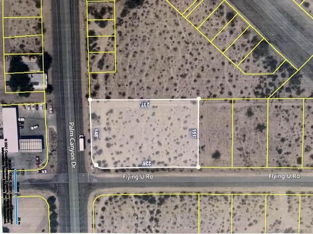 Palm Canyon Dr #266, Borrego Springs, CA 92004 (#210011672) :: Rubino Real Estate