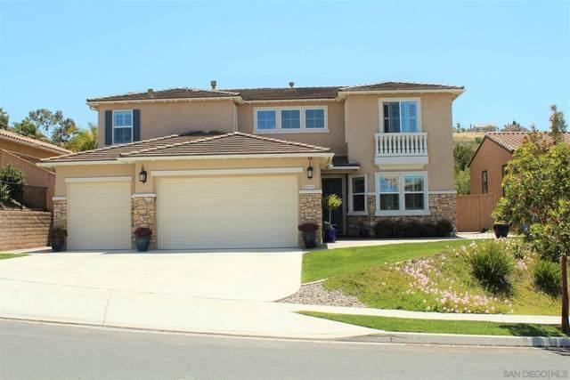 1121 Ocean Ridge Ct, Oceanside, CA 92056 (#210012000) :: Wannebo Real Estate Group
