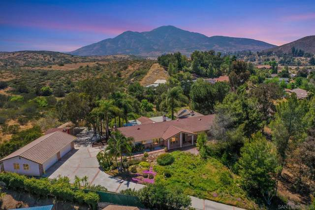 13773 Whispering Meadows Ln, Jamul, CA 91935 (#210012073) :: The Legacy Real Estate Team