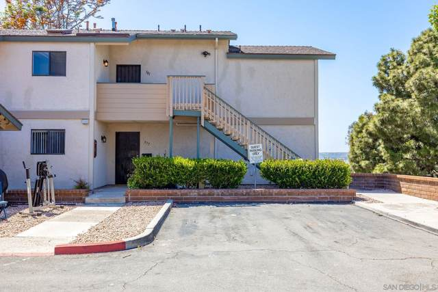 381 Stage Coach Rd, Oceanside, CA 92057 (#210012130) :: Wannebo Real Estate Group