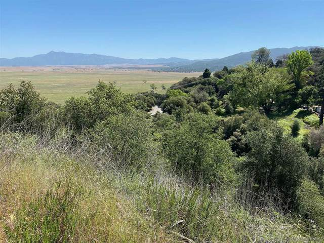 0 Mesa Grande Rd #0209.03, Santa Ysabel, CA 92070 (#210012421) :: The Legacy Real Estate Team