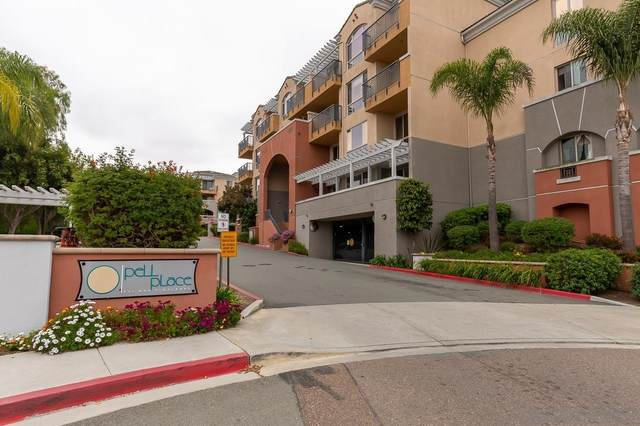 3877 Pell Pl #225, San Diego, CA 92130 (#210013025) :: The Legacy Real Estate Team