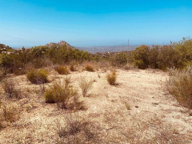 Painted Rock Rd #1, Ramona, CA 92065 (#210013064) :: PURE Real Estate Group