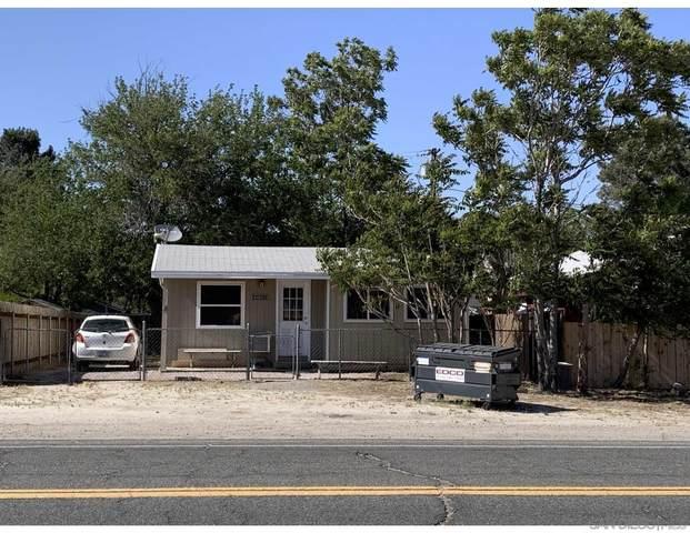 44674 Olde Highway 80, Jacumba, CA 91934 (#210013317) :: Neuman & Neuman Real Estate Inc.