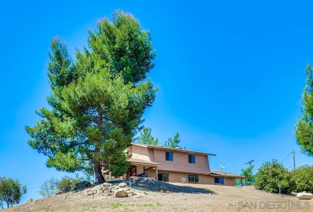 17151 Lawson Valley Road, Jamul, CA 91935 (#210013737) :: The Stein Group